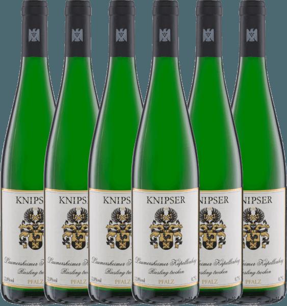 6er Vorteils-Weinpaket - Kapellchen Riesling 2020 - Knipser