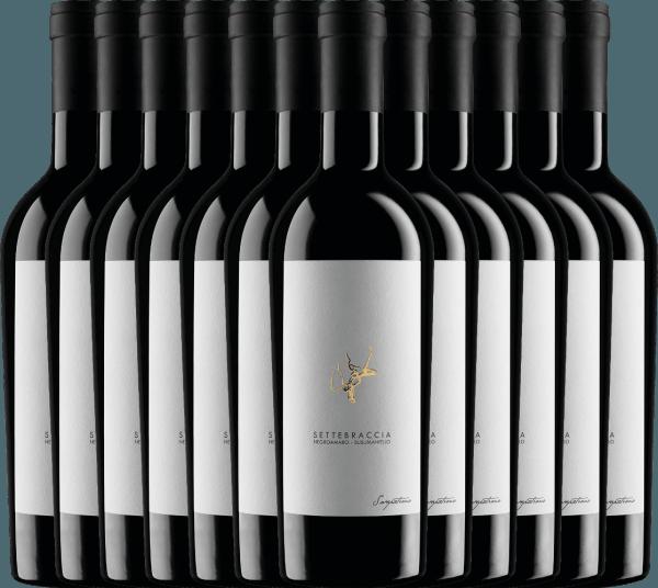 12er Vorteils-Weinpaket - Settebraccia Rosso 2016 - Cantina Sampietrana